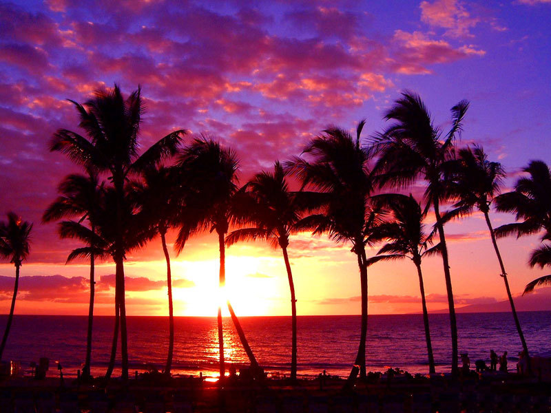 wpid-hawaii-sunset-wallpaper1