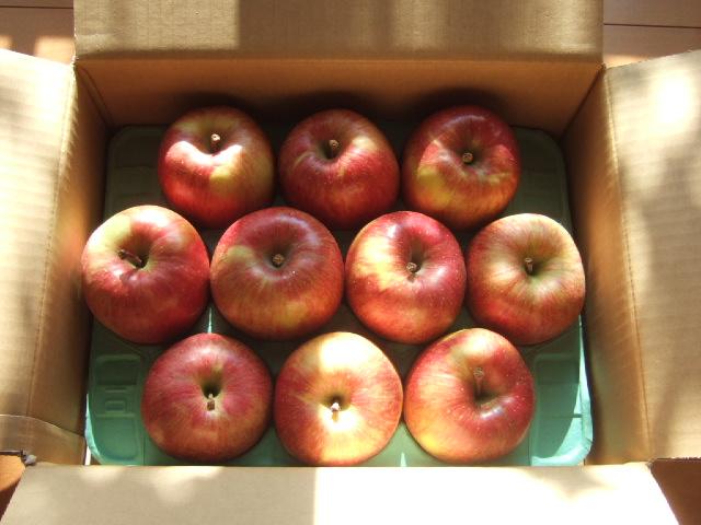 10個あるりんごを3人で均等に分ける方法はどういったものがあるのか?