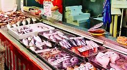 魚屋の開業資金と黒字経営に成功するコツまとめ